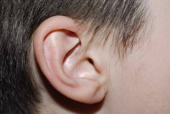 Dibujos de orejas animadas - Imagui